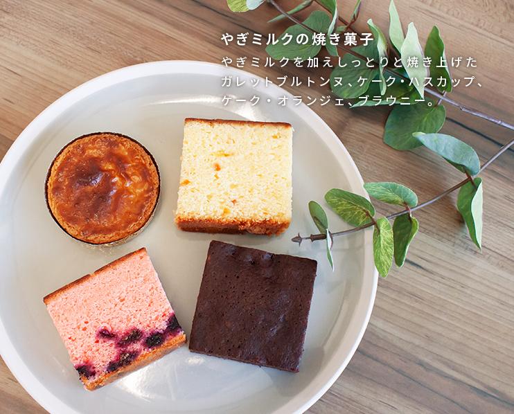 やぎミルクチーズテリーヌ